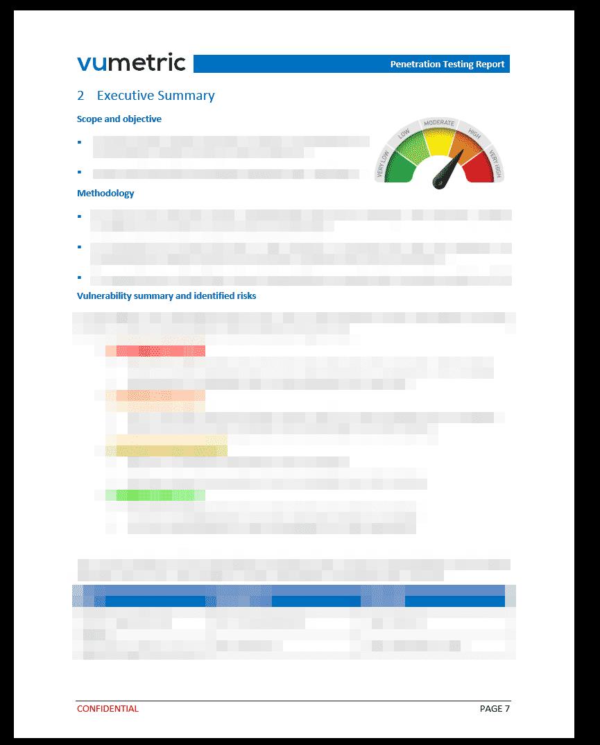 Penetration Testing Report